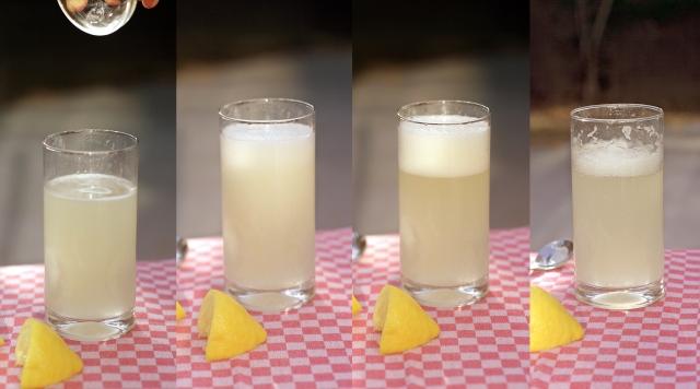 Soda Nectar Fizz