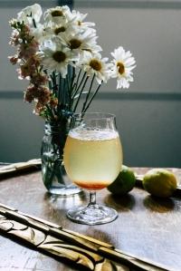 #229 Drink for the Dog Days - Post Stir